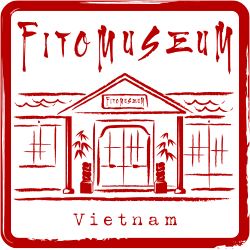 Fito Museum